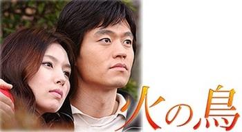 韓国ドラマBS放送予定2015『火の鳥』の画像.jpg